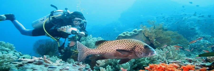 bali-wisata-bahari-water-sports-nusa-dua-diving-tours