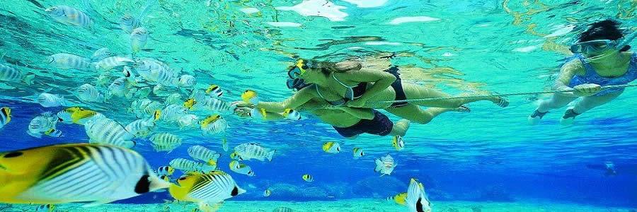 bali-wisata-bahari-water-sports-snorkeling-tours
