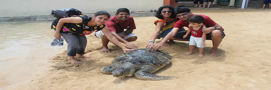 bali-wisata-bahari-water-sports-turtle-islands-tours