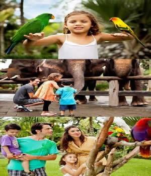 wisata-bali-zoo-park-explorer-packages-tours