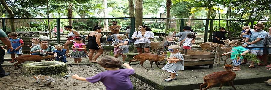 wisata-bali-zoo-park-tour