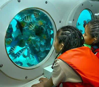 wisata-odyssey-submarine-bali-tour